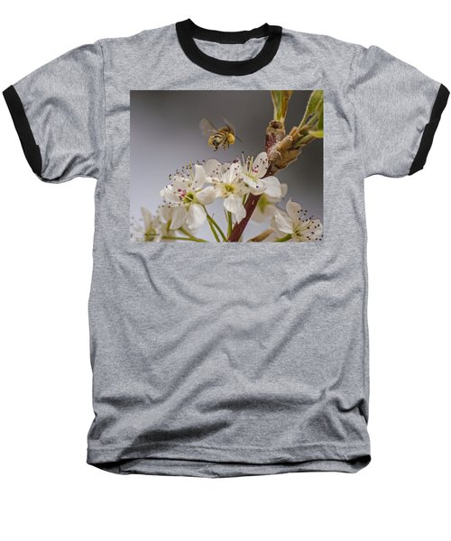 Bee Working The Bradford Pear 2 Baseball T-Shirt