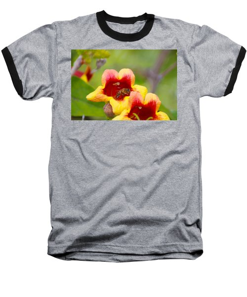 Beeautiful Baseball T-Shirt