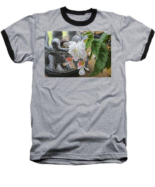 Begonia Baseball T-Shirt