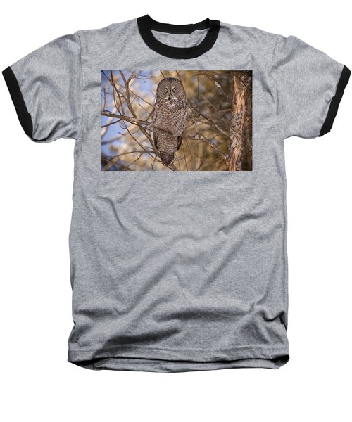 Being Observed Baseball T-Shirt by Eunice Gibb
