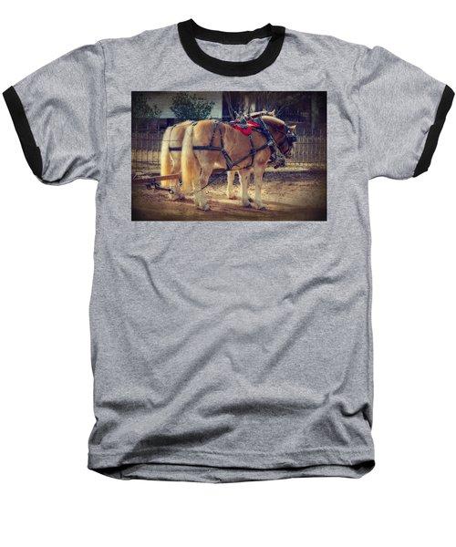 Belgium Draft Horses Baseball T-Shirt