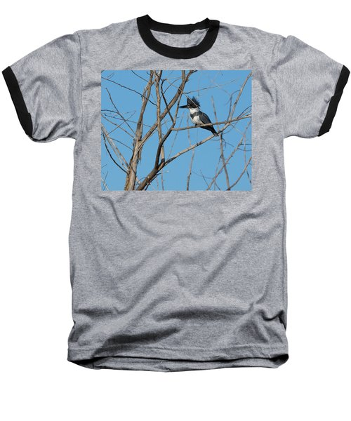 Belted Kingfisher 4 Baseball T-Shirt
