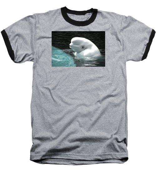 Beluga Whale Baseball T-Shirt by Brian Chase