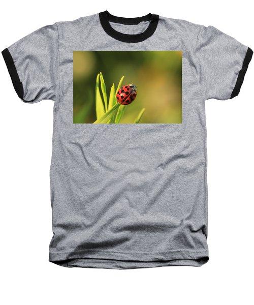 Beruska Baseball T-Shirt