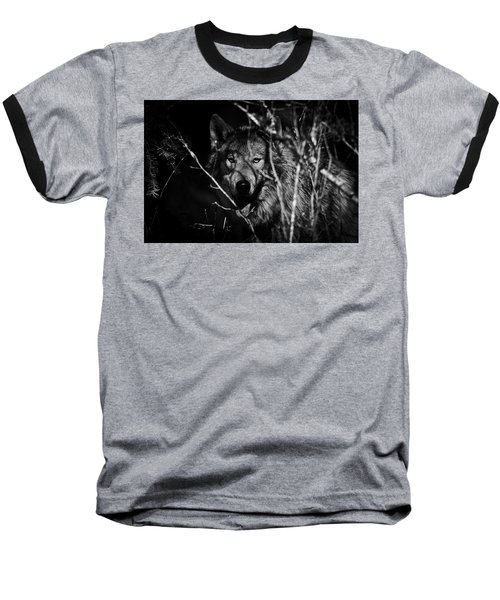 Beware The Woods Baseball T-Shirt