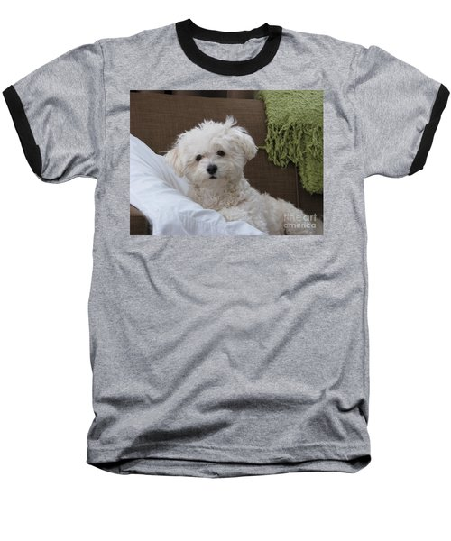 Molly 2 Baseball T-Shirt
