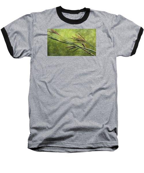 Big Bluestem In Bloom Baseball T-Shirt