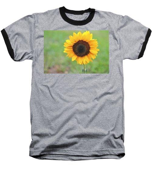 Big Bright Yellow Colorful Sunflower Art Print Baseball T-Shirt