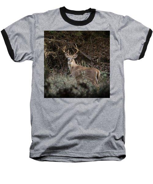 Big Buck Baseball T-Shirt