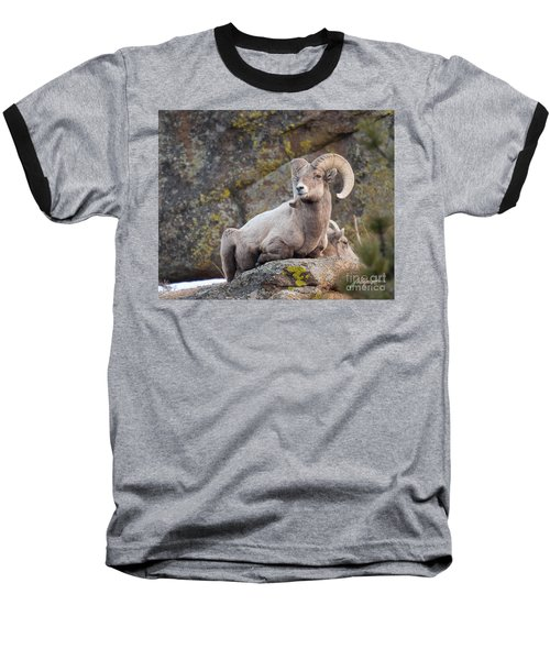 Big Horn Baseball T-Shirt