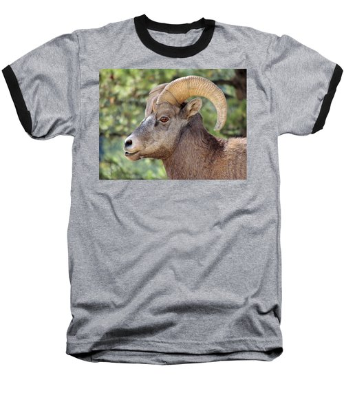 Baseball T-Shirt featuring the photograph Big Horn by Lynn Sprowl