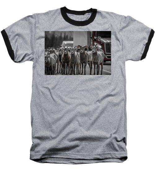 Big Horn Sheep Road Block Baseball T-Shirt