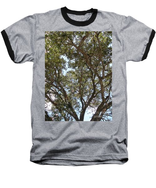 Big Oak Tree Baseball T-Shirt