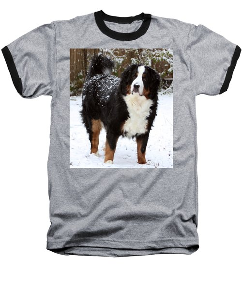 Baseball T-Shirt featuring the photograph Snow Happy by Patti Whitten