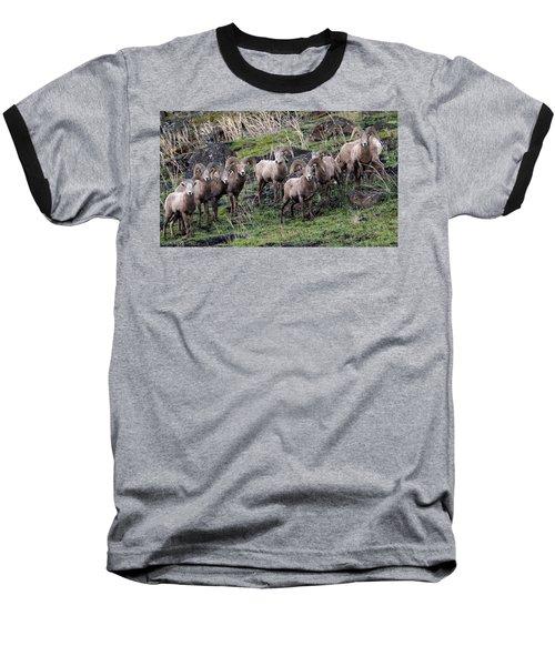 Bighorn Reunion Baseball T-Shirt