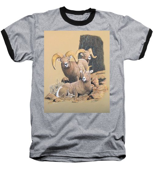 Bighorn Sheep Baseball T-Shirt