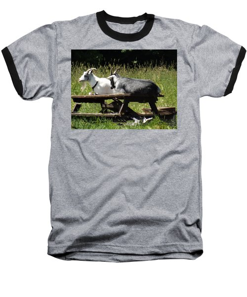 Billy Goats Picnic Baseball T-Shirt by Brenda Brown