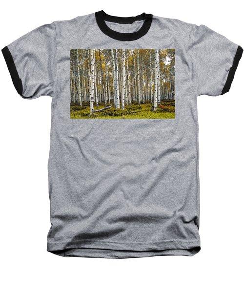 Aspen Trees In Autumn Baseball T-Shirt