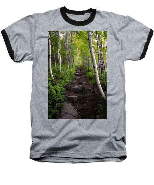 Birch Woods Hike Baseball T-Shirt