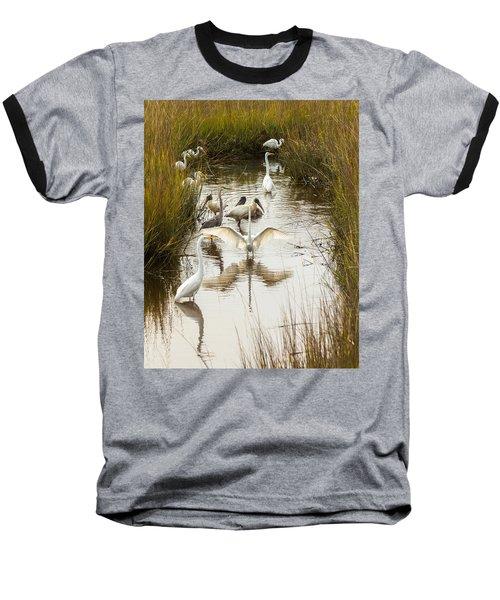 Bird Brunch 2 Baseball T-Shirt
