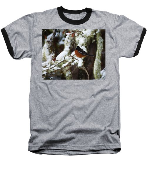 Bird In Snow Baseball T-Shirt