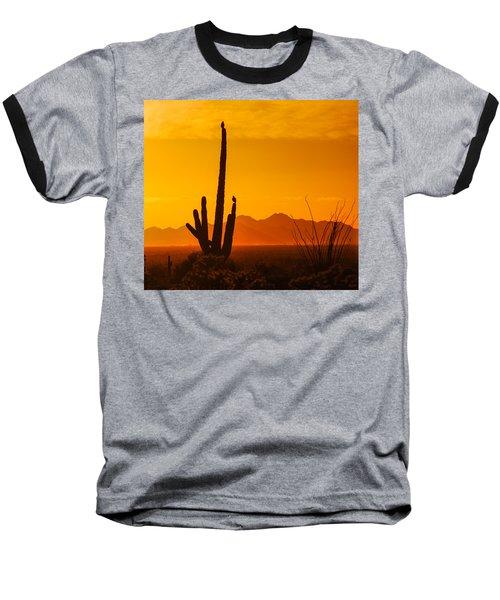 Birds In Silhouette Baseball T-Shirt