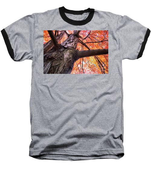 Baseball T-Shirt featuring the photograph Bird's Pov ...lol by John S