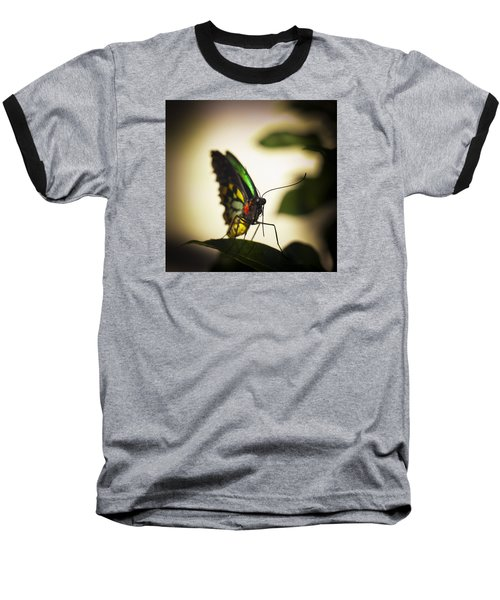 Birdwing Butterfly Baseball T-Shirt by Bradley R Youngberg