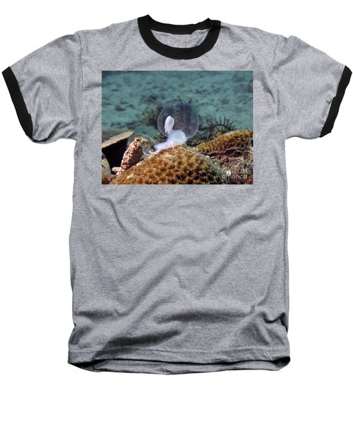 Baseball T-Shirt featuring the photograph Birth Of Marine Cuttlefish by Sergey Lukashin