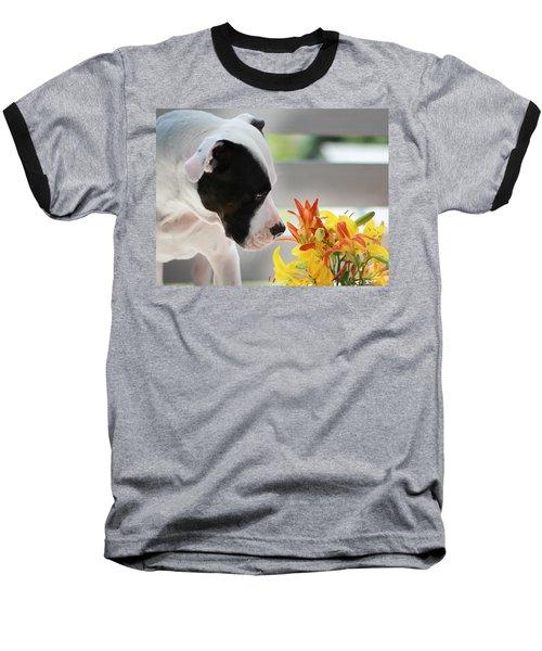 Birthday Bouquet Baseball T-Shirt by Shelley Neff