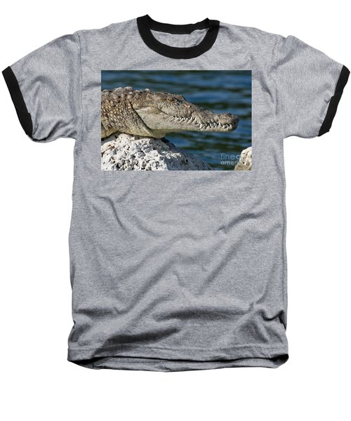 Baseball T-Shirt featuring the photograph Biscayne National Park Florida American Crocodile by Paul Fearn