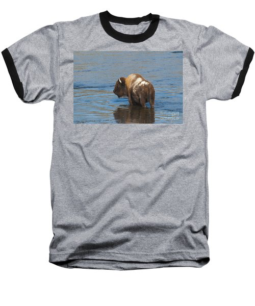 Bison Crossing River Baseball T-Shirt