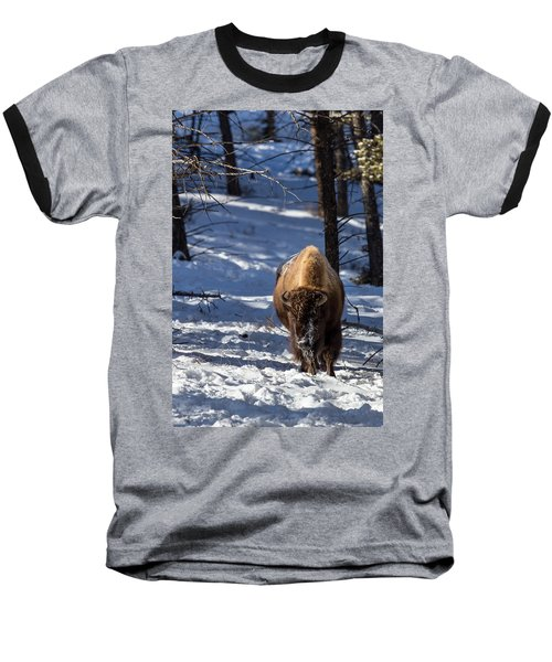 Bison In Winter Baseball T-Shirt