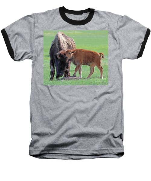 Baseball T-Shirt featuring the photograph Bison With Young Calf by Bill Gabbert
