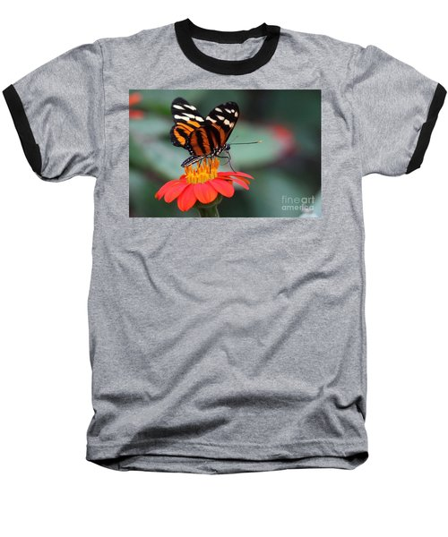 Black And Brown Butterfly On A Red Flower Baseball T-Shirt