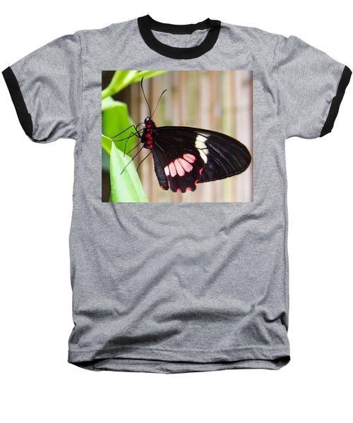 Black And Red Cattleheart Butterfly Baseball T-Shirt by Amy McDaniel