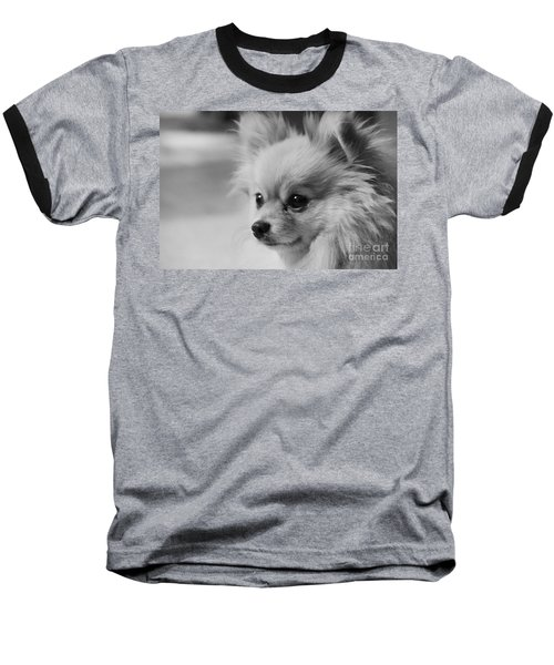 Black And White Portrait Of Pixie The Pomeranian Baseball T-Shirt