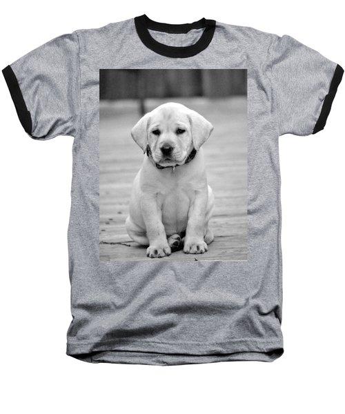 Black And White Puppy Baseball T-Shirt