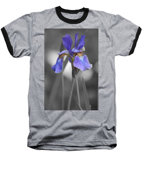 Black And White Purple Iris Baseball T-Shirt by Brenda Jacobs