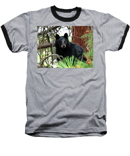 Black Bear 1 Baseball T-Shirt