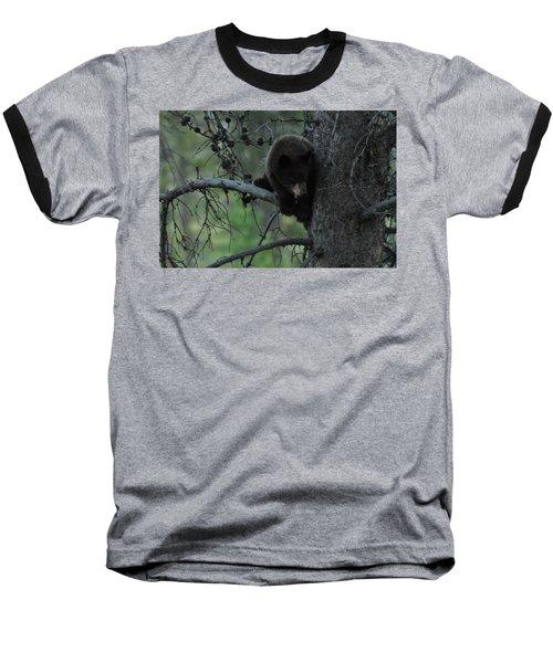 Black Bear Cub In Tree Baseball T-Shirt