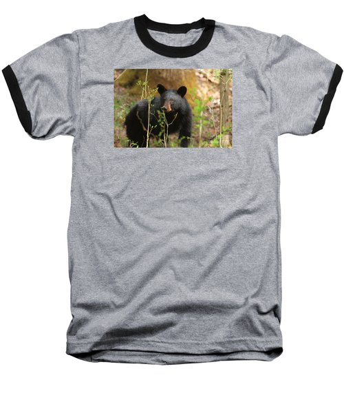 Baseball T-Shirt featuring the photograph Black Bear by Geraldine DeBoer