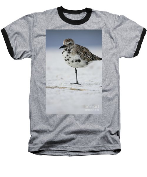 Black-bellied Plover Baseball T-Shirt
