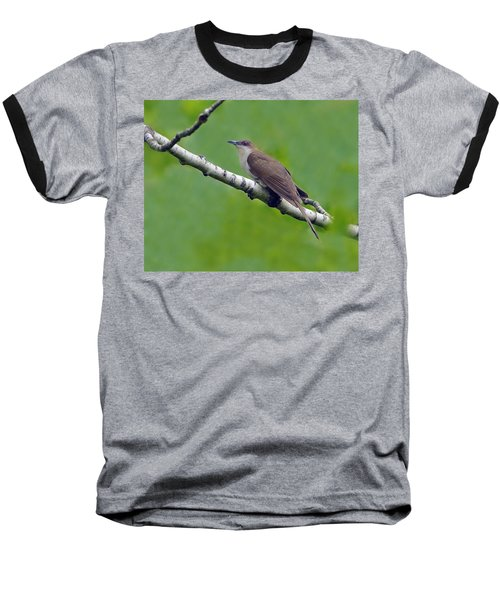 Black-billed Cuckoo Baseball T-Shirt