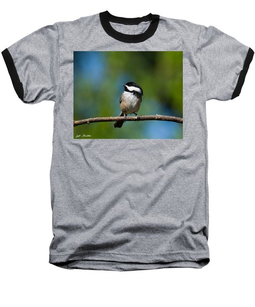 Black Capped Chickadee Perched On A Branch Baseball T-Shirt