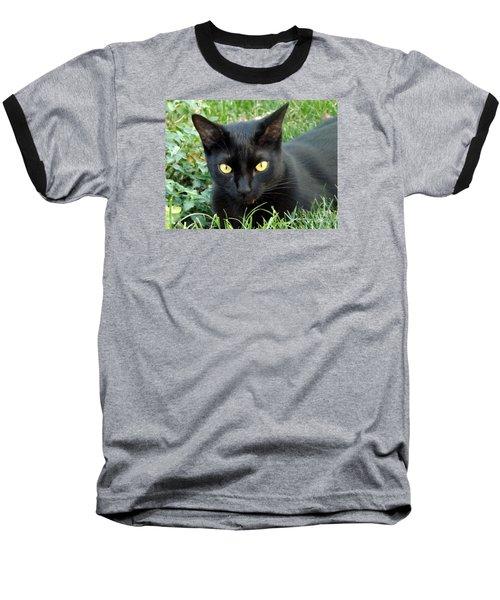 Black Cat Baseball T-Shirt by Lingfai Leung