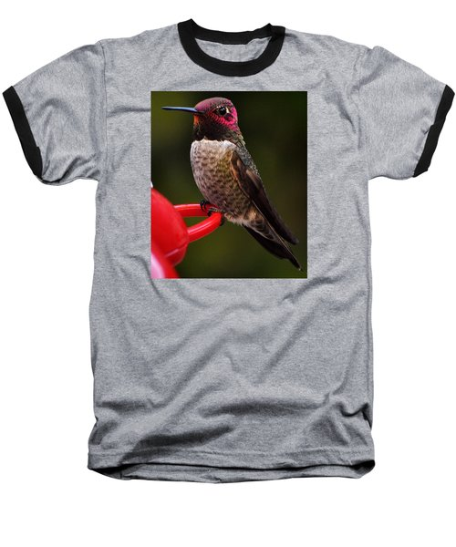 Baseball T-Shirt featuring the photograph Black Chinned Male Hummingbird by Jay Milo