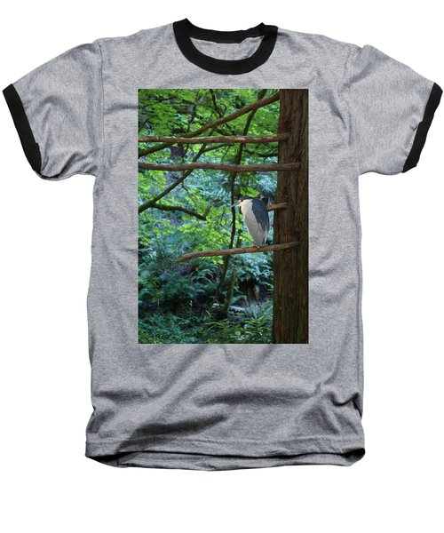 Black-crowned Night Heron Baseball T-Shirt