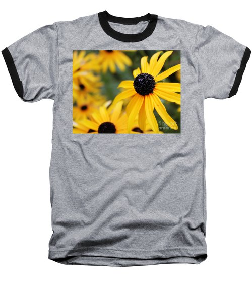 Black Eyed Susan Baseball T-Shirt by Melissa Petrey