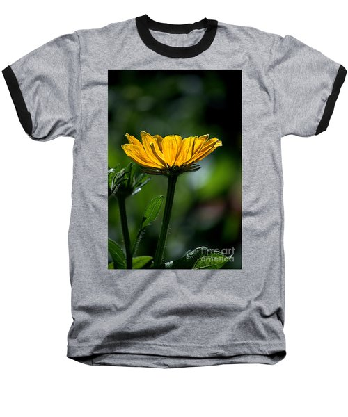 Black Eyed Susan Baseball T-Shirt by Sharon Elliott